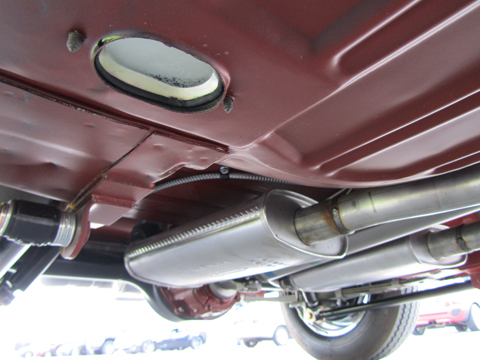 1966 Shelby GT350 Hertz underneath the car