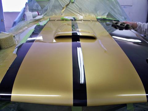 1966 Shelby GT350 Hertz hood