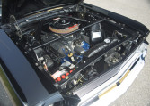 1966 Shelby GT350 black engine