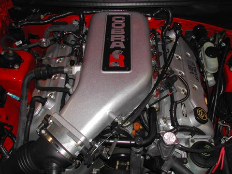 2000 Ford Mustang Cobra R engine