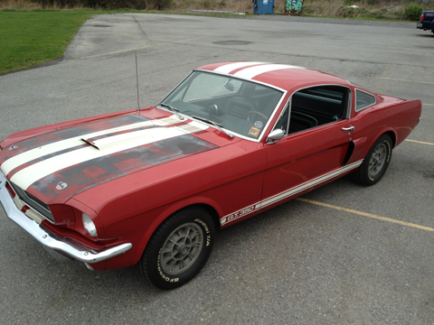 1966 Shelby GT350 driver side
