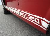 1966 Shelby GT350 side