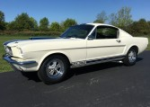 1965 Shelby GT350 Tribute